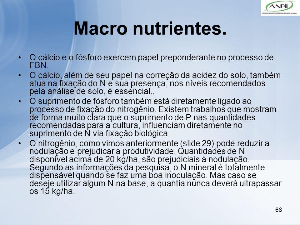 Macro nutrientes. O cálcio e o fósforo exercem papel preponderante no processo de FBN.