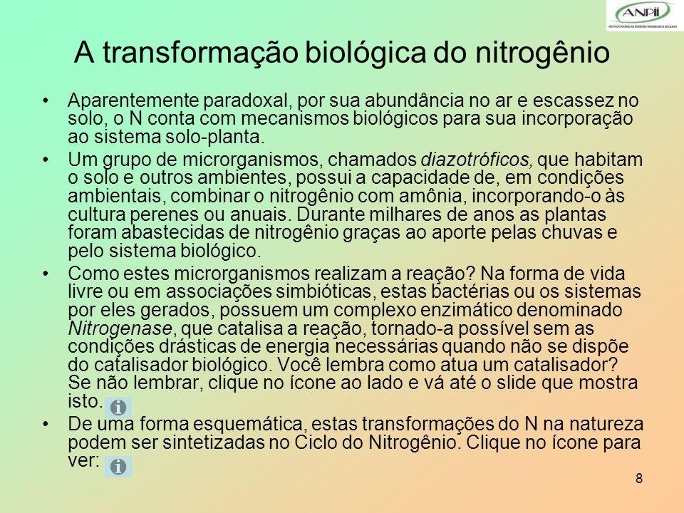 A transformação biológica do nitrogênio