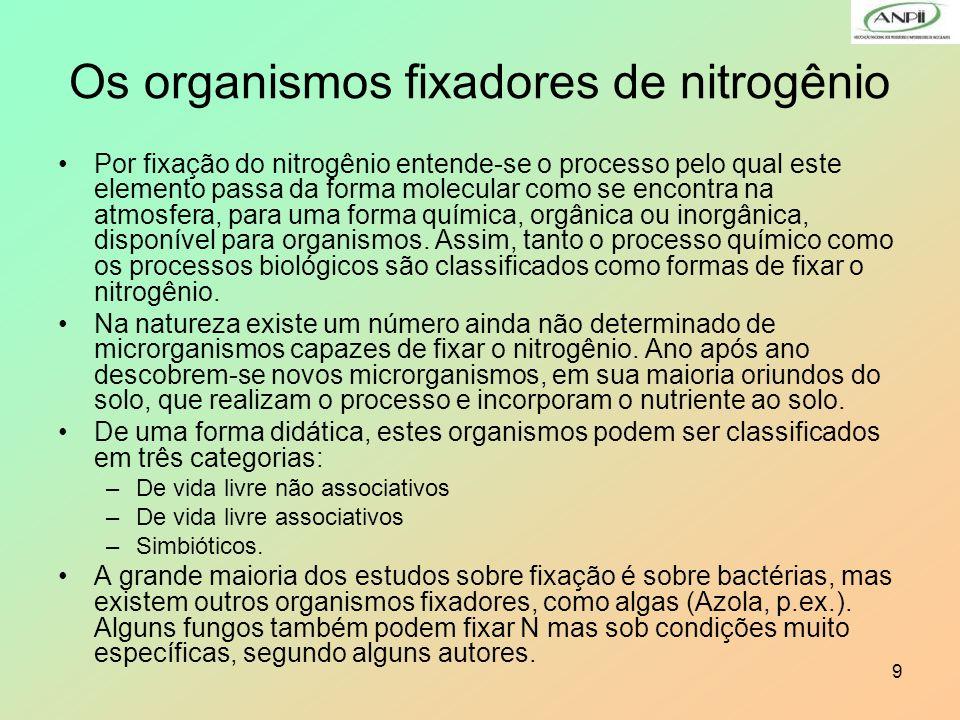 Os organismos fixadores de nitrogênio