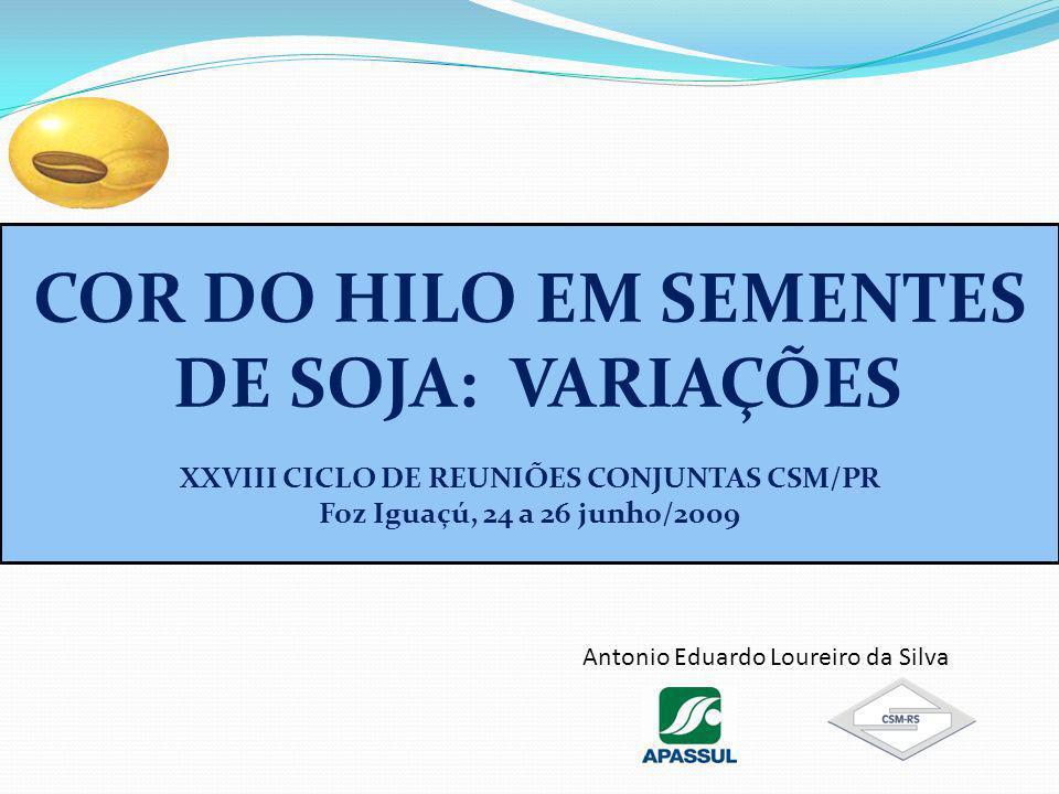 XXVIII CICLO DE REUNIÕES CONJUNTAS CSM/PR
