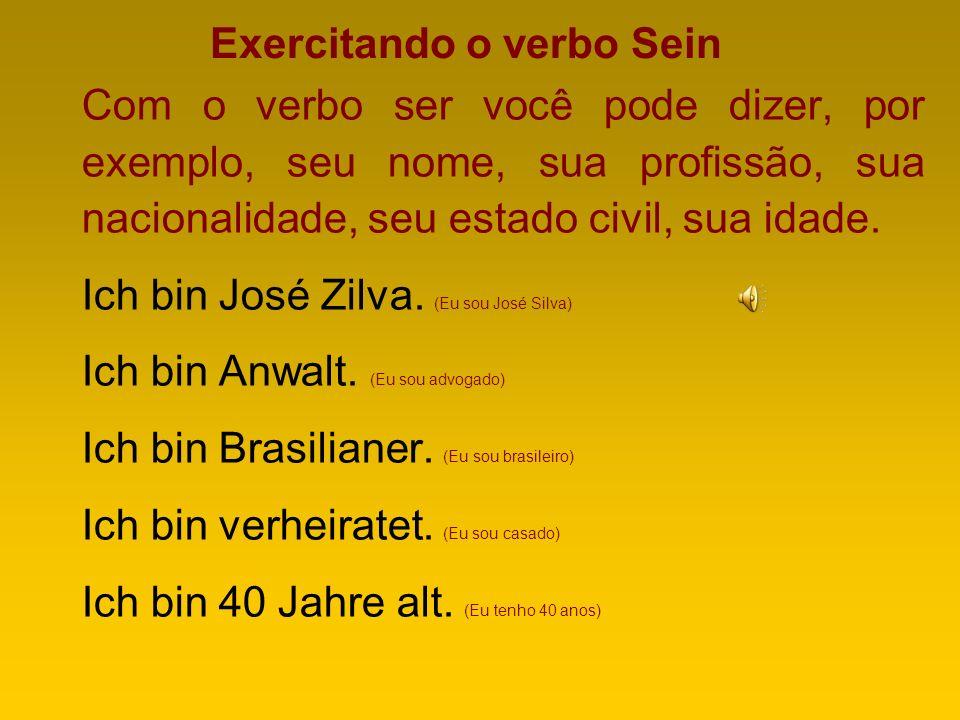 Exercitando o verbo Sein