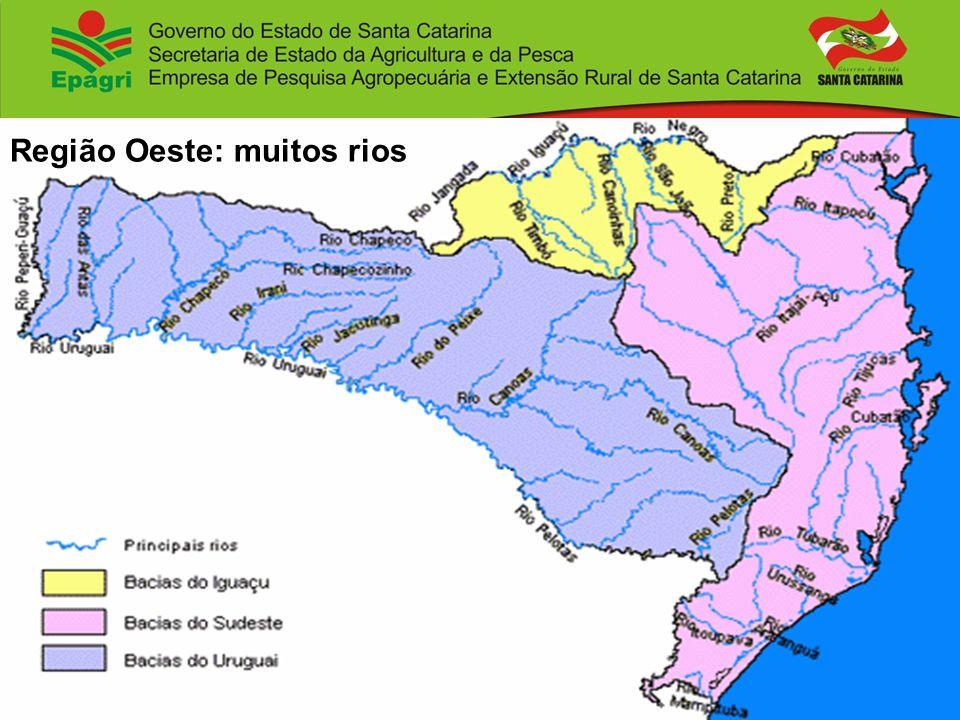 Região Oeste: muitos rios