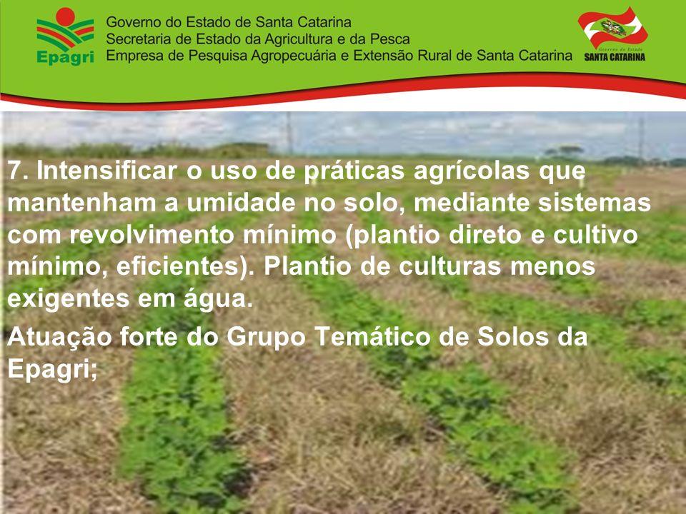 7. Intensificar o uso de práticas agrícolas que mantenham a umidade no solo, mediante sistemas com revolvimento mínimo (plantio direto e cultivo mínimo, eficientes). Plantio de culturas menos exigentes em água.