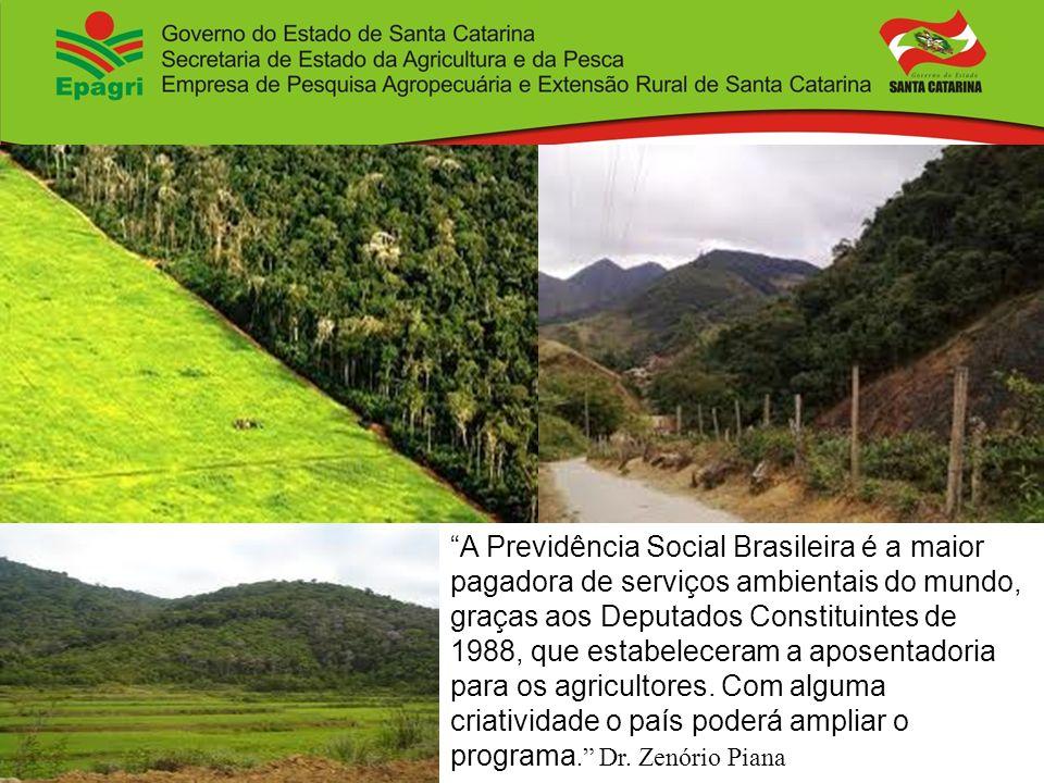 A Previdência Social Brasileira é a maior pagadora de serviços ambientais do mundo, graças aos Deputados Constituintes de 1988, que estabeleceram a aposentadoria para os agricultores.