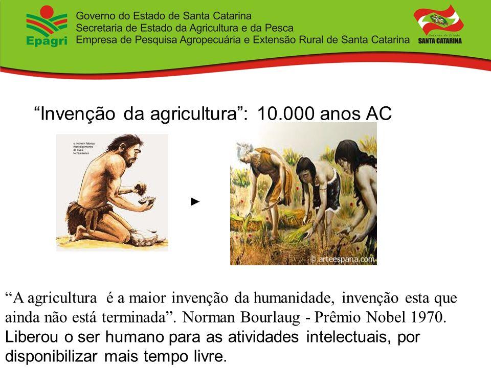 Invenção da agricultura : 10.000 anos AC