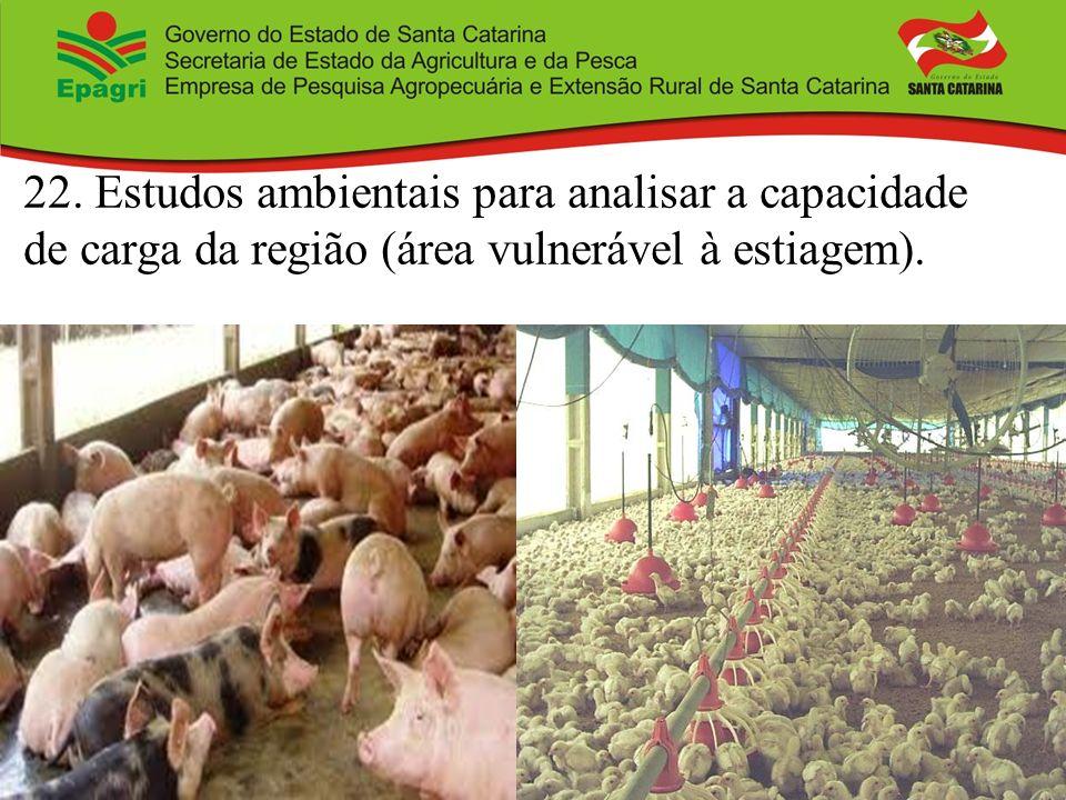 22. Estudos ambientais para analisar a capacidade de carga da região (área vulnerável à estiagem).