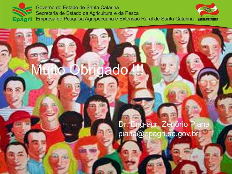 Muito Obrigado !!! Dr. Eng-agr. Zenório Piana piana@epagri.sc.gov.br