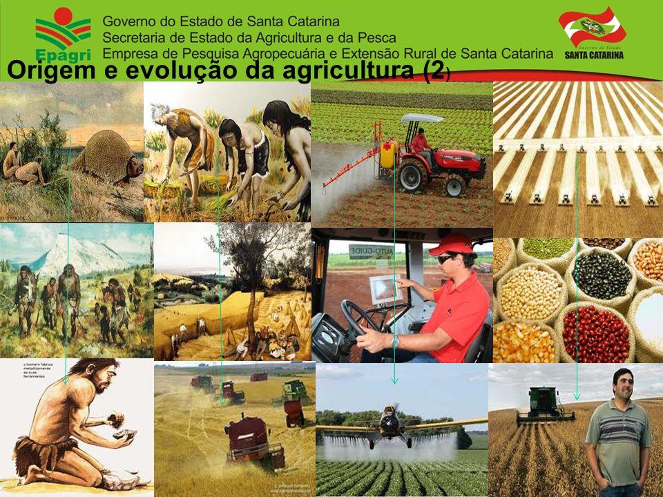 Origem e evolução da agricultura (2)