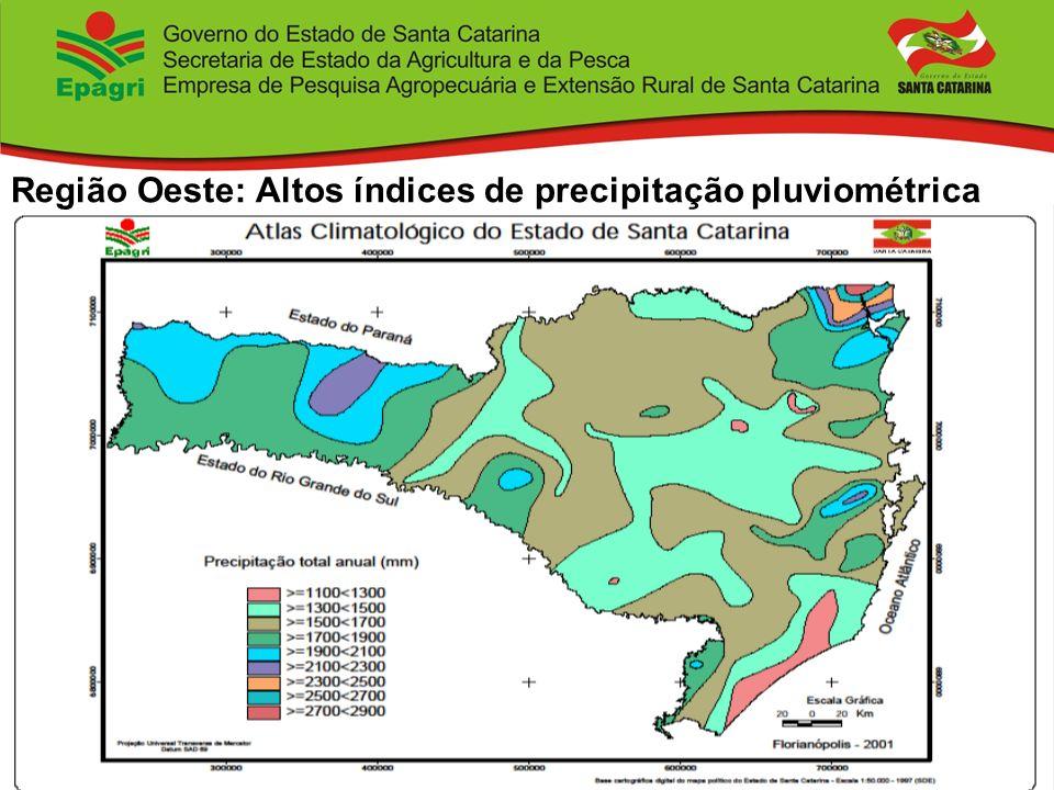 Região Oeste: Altos índices de precipitação pluviométrica