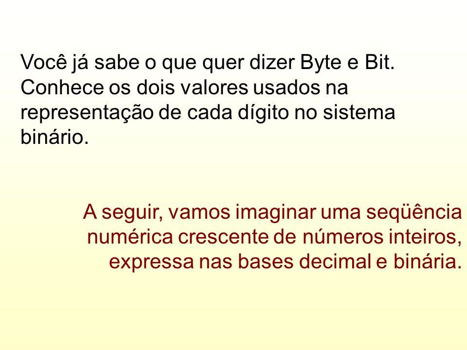 Você já sabe o que quer dizer Byte e Bit