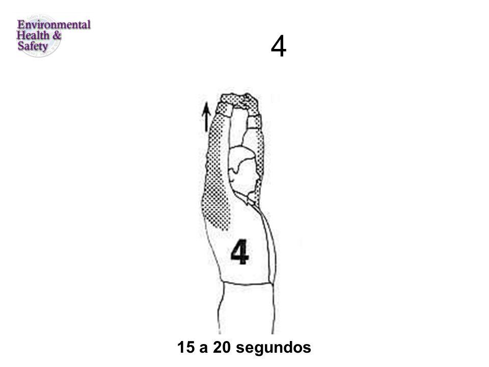 4 15 a 20 segundos