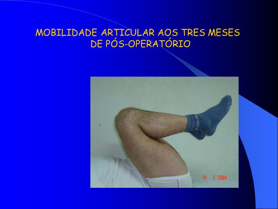 MOBILIDADE ARTICULAR AOS TRES MESES