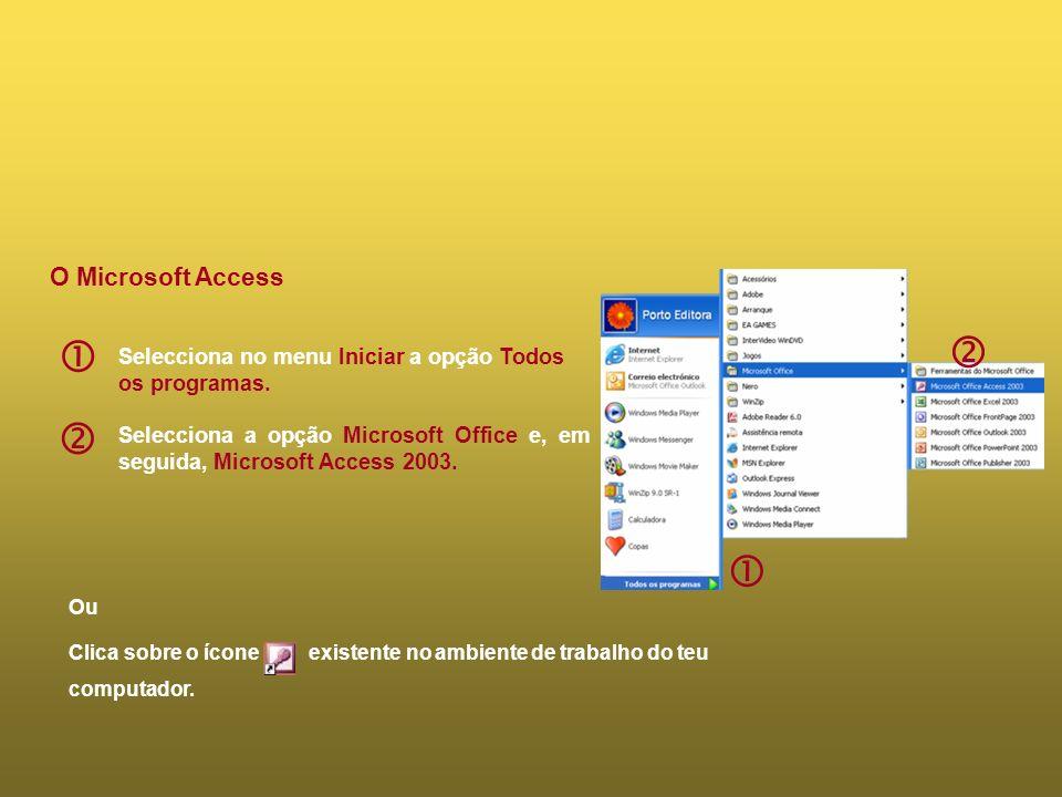     O Microsoft Access