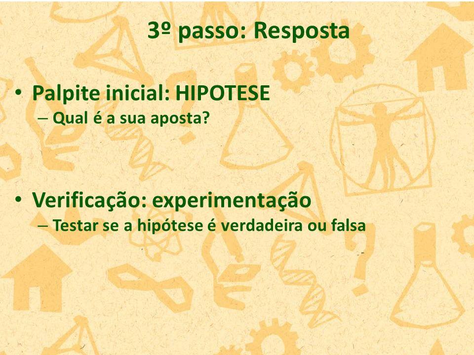 3º passo: Resposta Palpite inicial: HIPOTESE