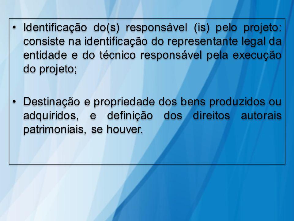Identificação do(s) responsável (is) pelo projeto: consiste na identificação do representante legal da entidade e do técnico responsável pela execução do projeto;