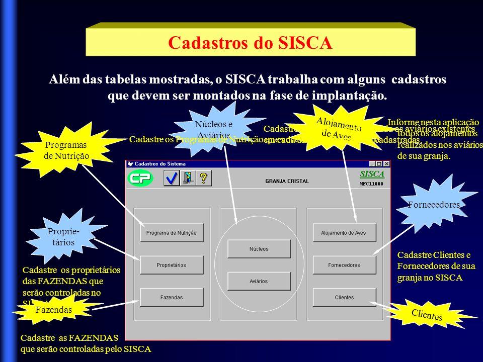 Cadastros do SISCA Além das tabelas mostradas, o SISCA trabalha com alguns cadastros que devem ser montados na fase de implantação.