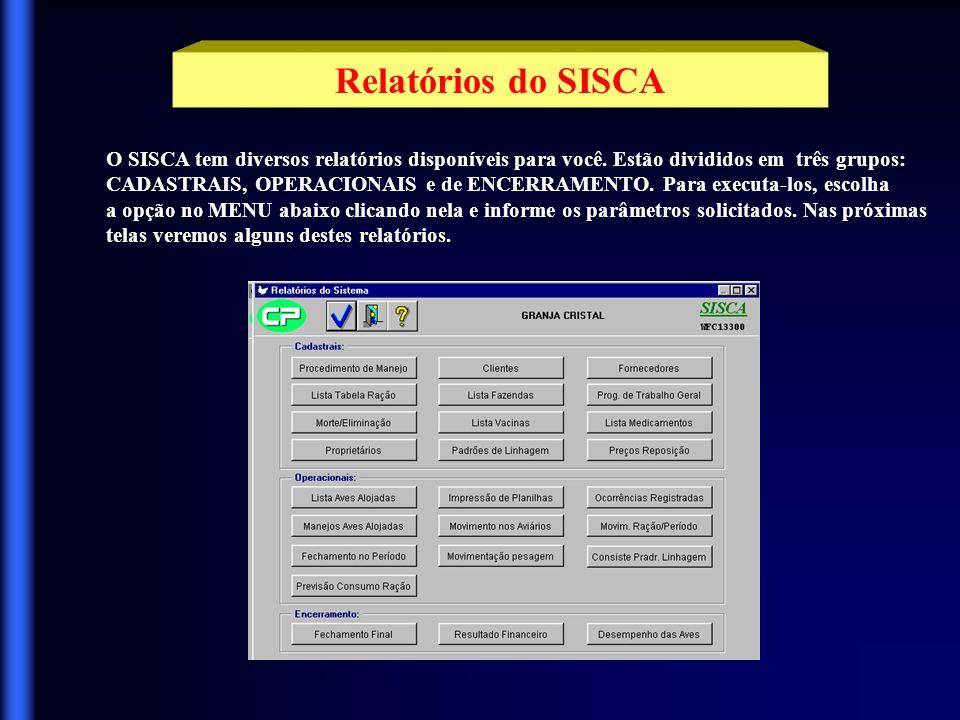 Relatórios do SISCA O SISCA tem diversos relatórios disponíveis para você. Estão divididos em três grupos: