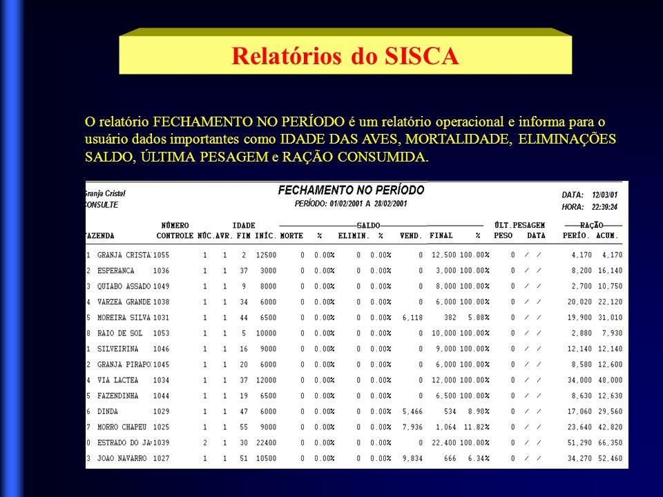 Relatórios do SISCA O relatório FECHAMENTO NO PERÍODO é um relatório operacional e informa para o.