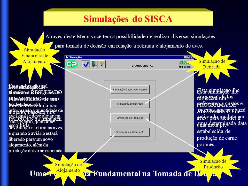Simulações do SISCA Uma Ferramenta Fundamental na Tomada de Decisão
