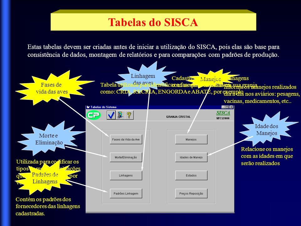 Tabelas do SISCA Estas tabelas devem ser criadas antes de iniciar a utilização do SISCA, pois elas são base para.