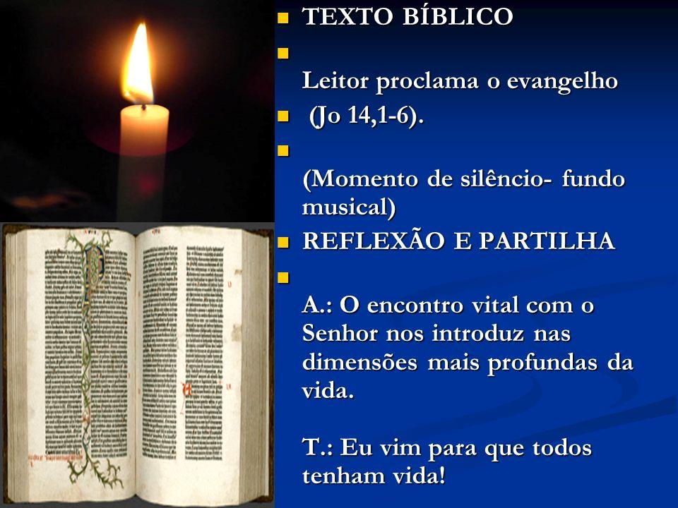 TEXTO BÍBLICO Leitor proclama o evangelho. (Jo 14,1-6). (Momento de silêncio- fundo musical) REFLEXÃO E PARTILHA.