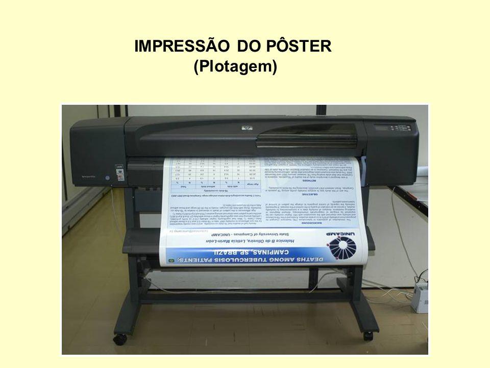 IMPRESSÃO DO PÔSTER (Plotagem)