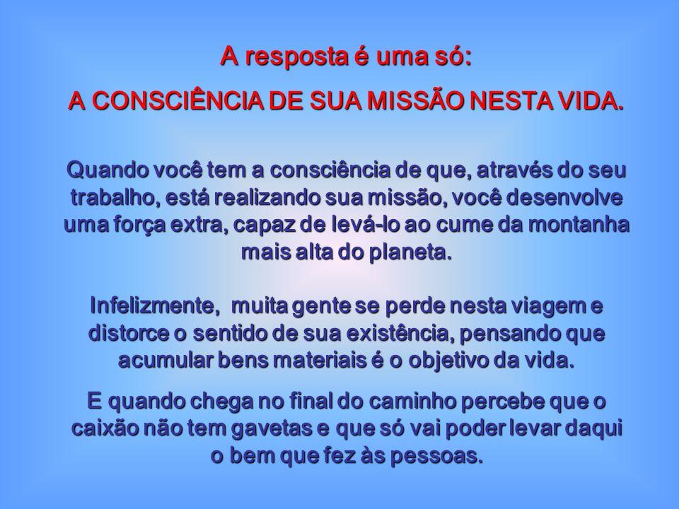 A CONSCIÊNCIA DE SUA MISSÃO NESTA VIDA.
