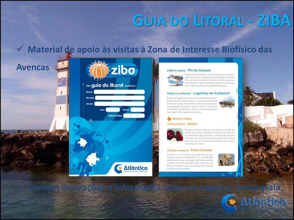 Guia do Litoral - ZIBA Material de apoio às visitas à Zona de Interesse Biofísico das Avencas.