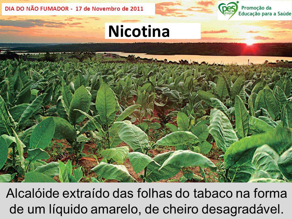DIA DO NÃO FUMADOR - 17 de Novembro de 2011