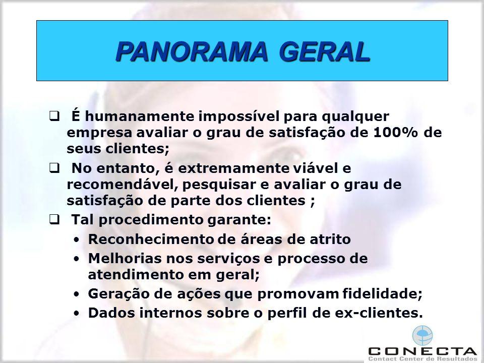 PANORAMA GERAL É humanamente impossível para qualquer empresa avaliar o grau de satisfação de 100% de seus clientes;
