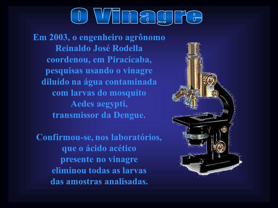 O Vinagre Em 2003, o engenheiro agrônomo Reinaldo José Rodella coordenou, em Piracicaba, pesquisas usando o vinagre.