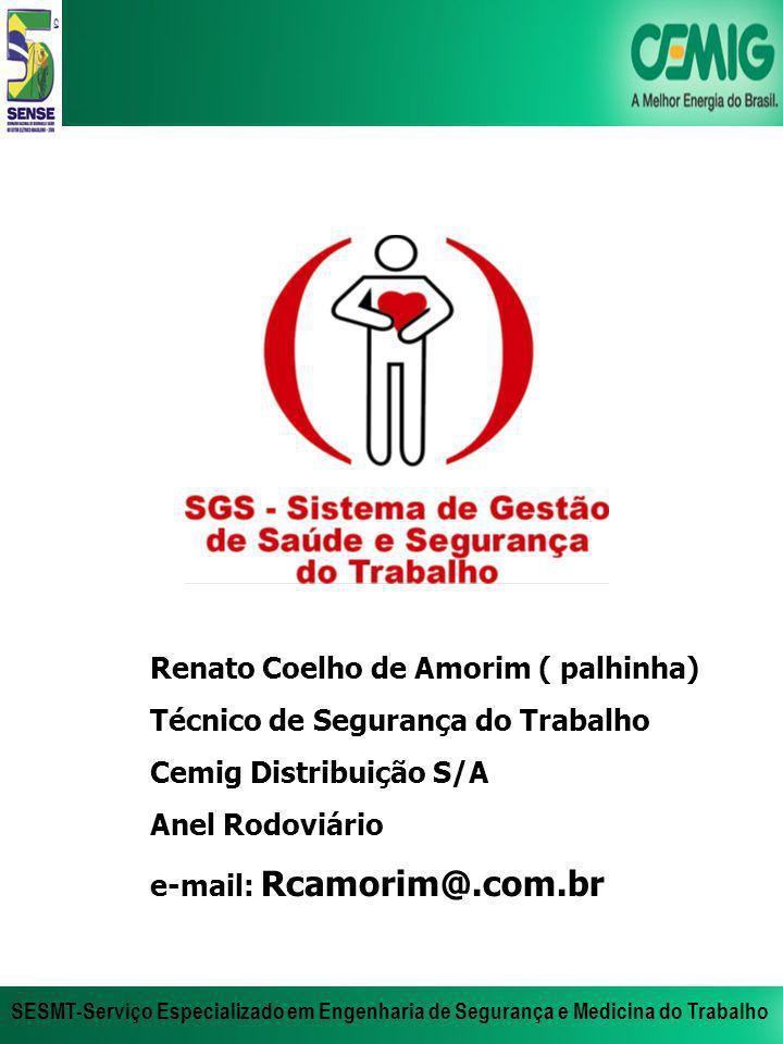 Renato Coelho de Amorim ( palhinha)