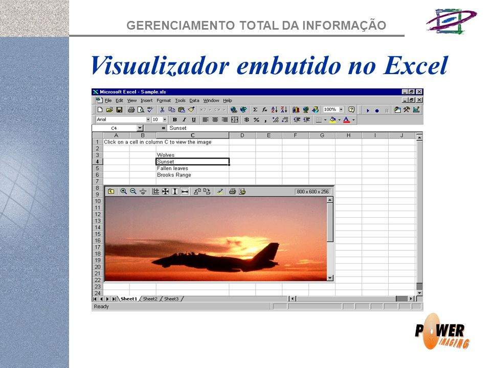 Visualizador embutido no Excel