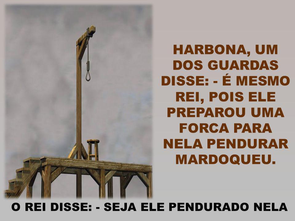 HARBONA, UM DOS GUARDAS DISSE: - É MESMO REI, POIS ELE PREPAROU UMA FORCA PARA NELA PENDURAR MARDOQUEU.