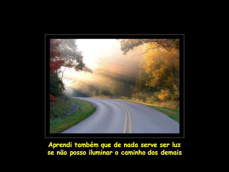 Aprendi também que de nada serve ser luz se não posso iluminar o caminho dos demais
