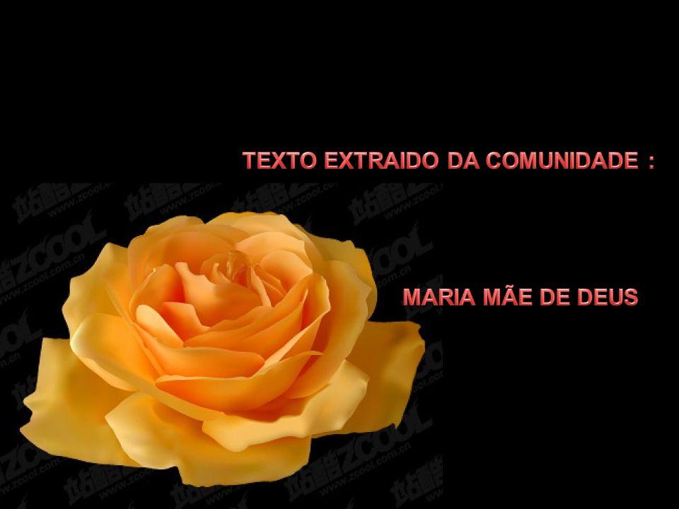 TEXTO EXTRAIDO DA COMUNIDADE :