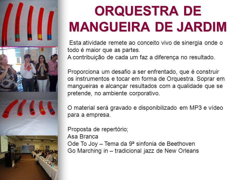 ORQUESTRA DE MANGUEIRA DE JARDIM