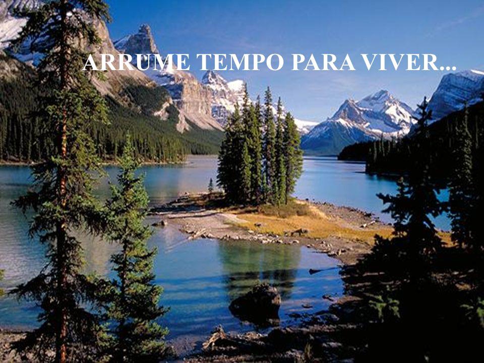 ARRUME TEMPO PARA VIVER...