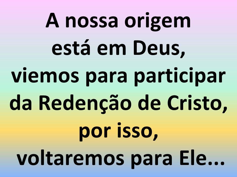 A nossa origem está em Deus, viemos para participar da Redenção de Cristo, por isso, voltaremos para Ele...
