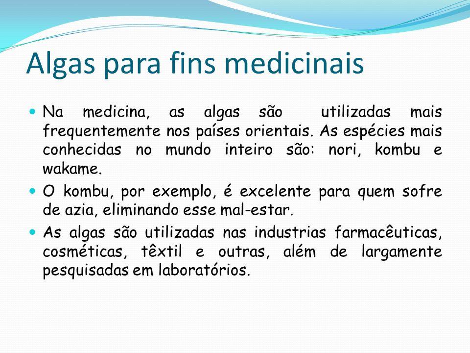 Algas para fins medicinais