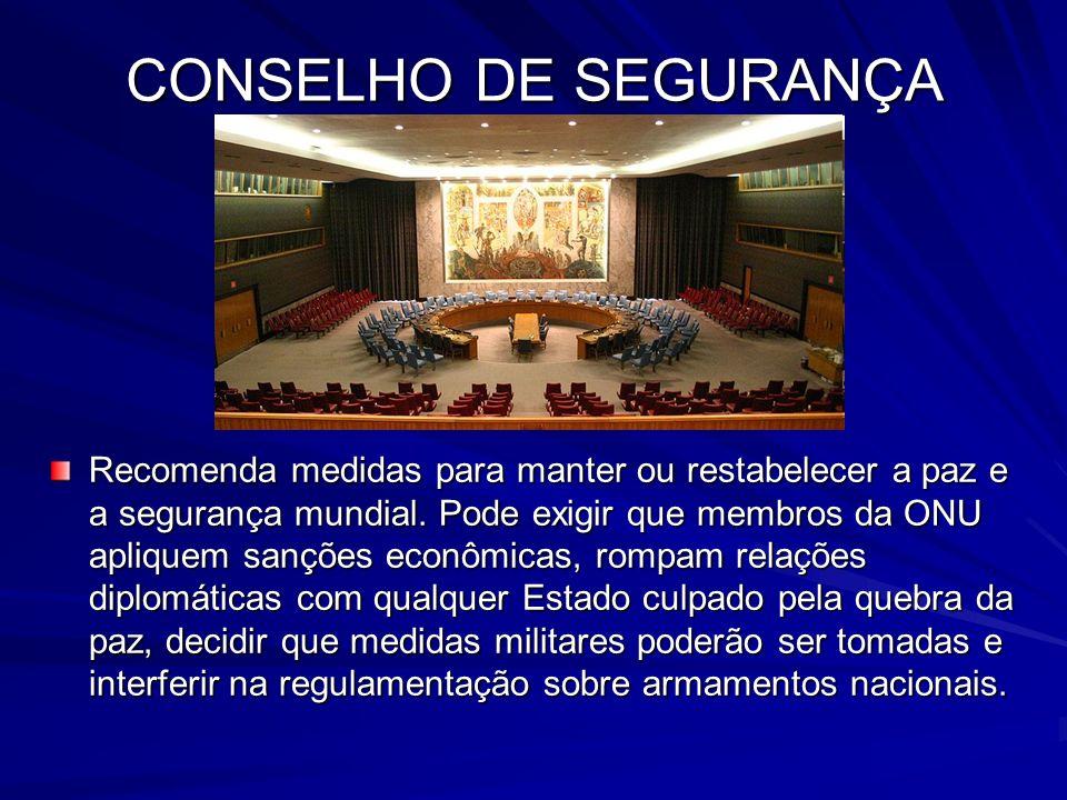 CONSELHO DE SEGURANÇA