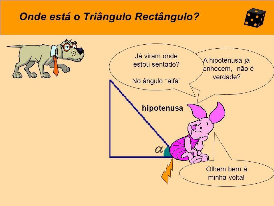 Onde está o Triângulo Rectângulo