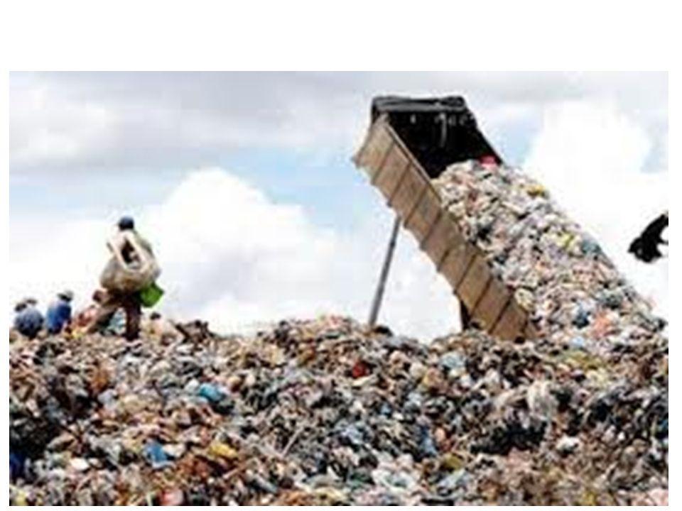 Fonte: APOENA 2010 – Órgão de Defesa ao Meio Ambiente.
