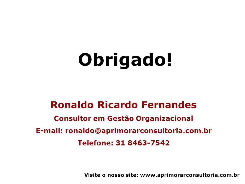 Obrigado! Ronaldo Ricardo Fernandes Consultor em Gestão Organizacional
