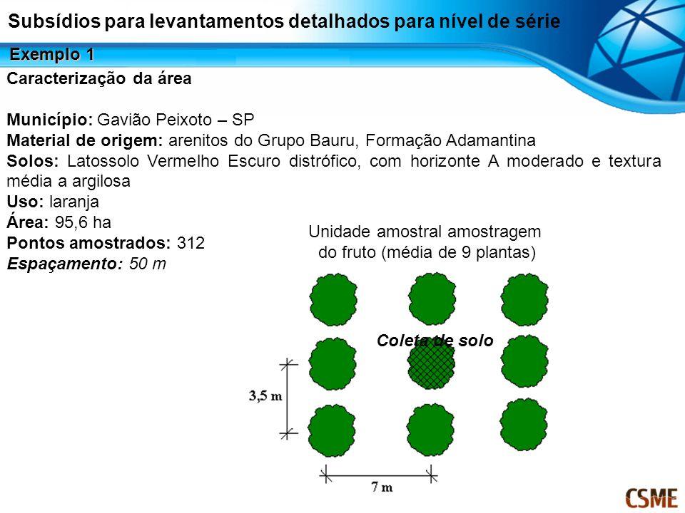 Subsídios para levantamentos detalhados para nível de série