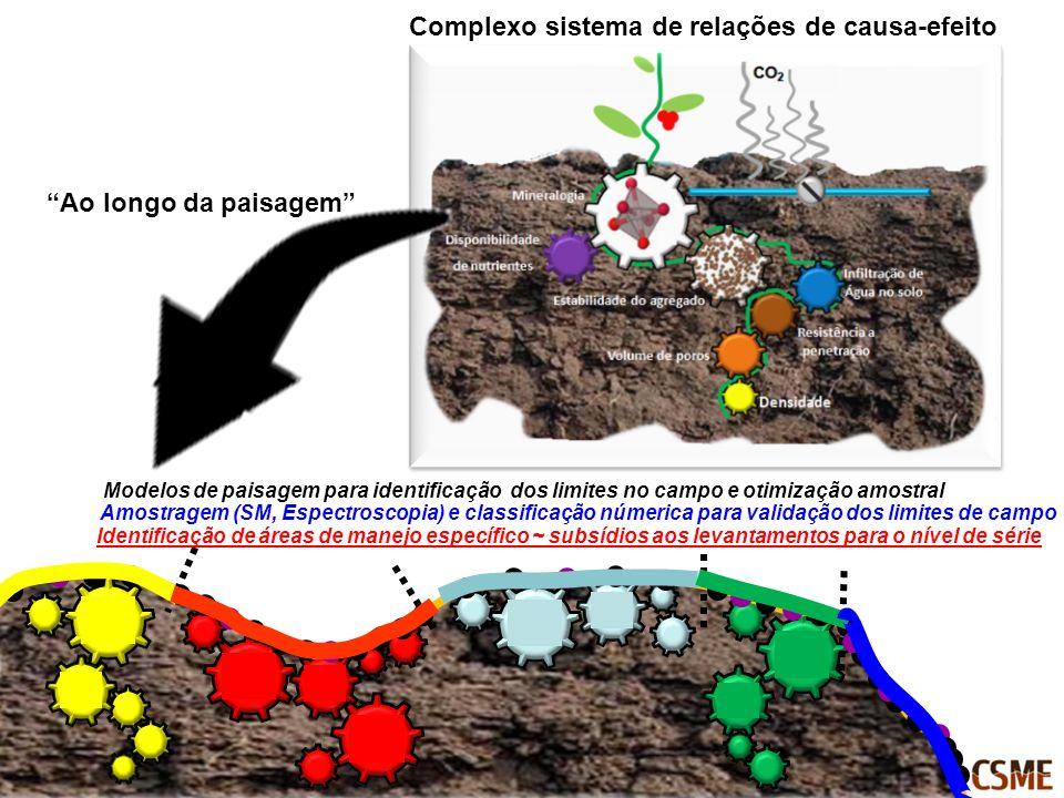 Complexo sistema de relações de causa-efeito
