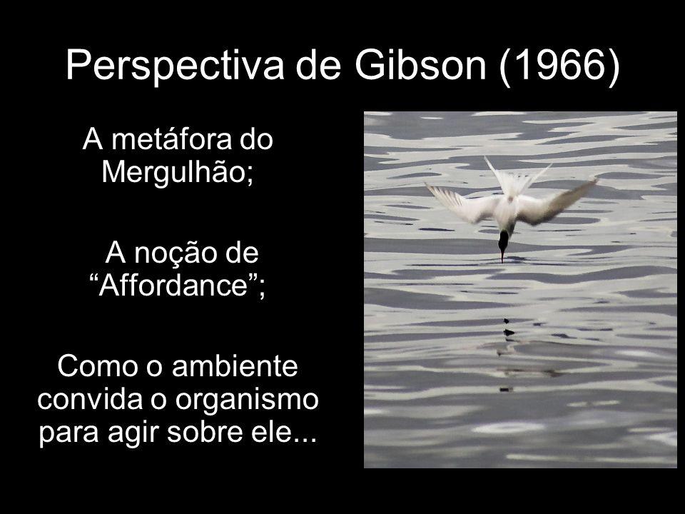 Perspectiva de Gibson (1966)