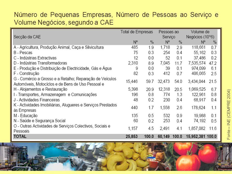 Número de Pequenas Empresas, Número de Pessoas ao Serviço e Volume Negócios, segundo a CAE
