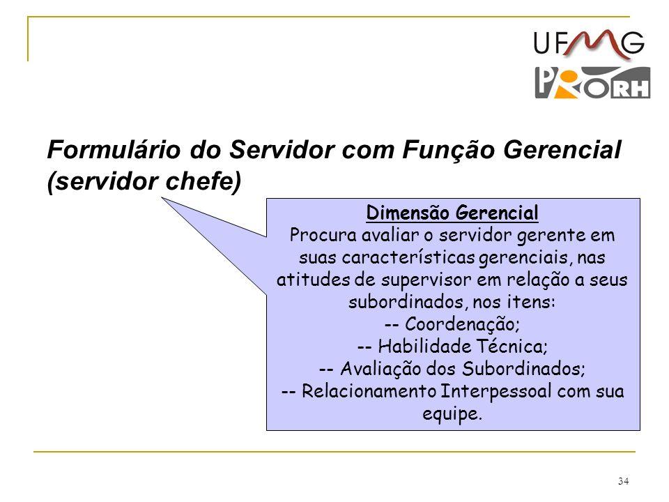 Formulário do Servidor com Função Gerencial (servidor chefe)