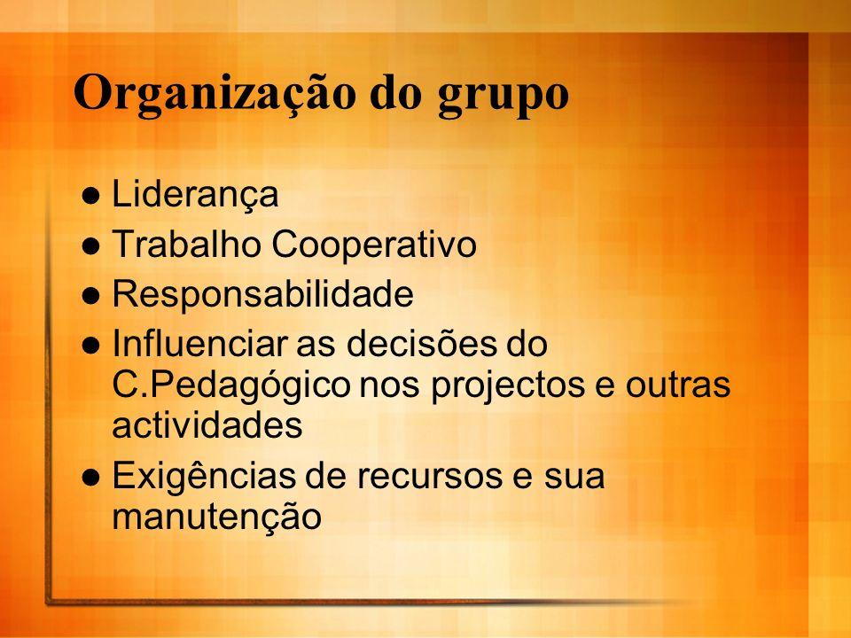 Organização do grupo Liderança Trabalho Cooperativo Responsabilidade